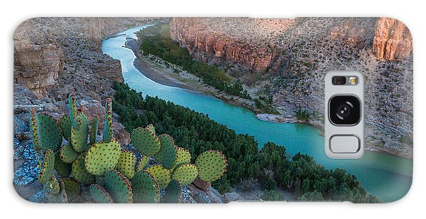 Cacti Galaxy Case - Big Bend Evening by Inge Johnsson