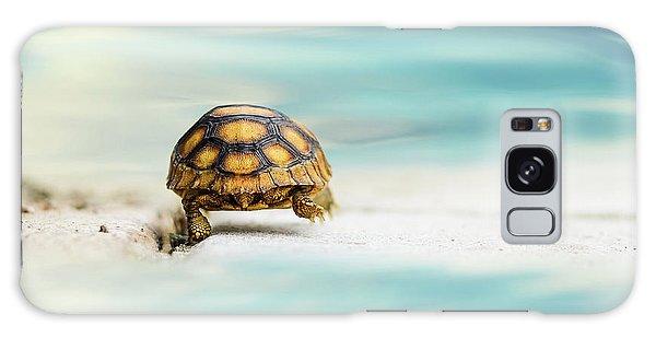 Turtle Galaxy Case - Big Big World by Laura Fasulo