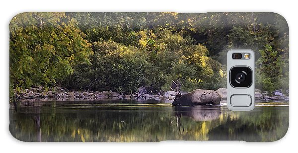 Big Bull In Buffalo National River Fall Color Galaxy Case