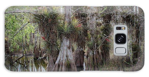 Big Cypress Preserve Galaxy Case