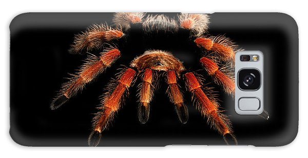 Big Hairy Tarantula Theraphosidae Isolated On Black Background Galaxy Case