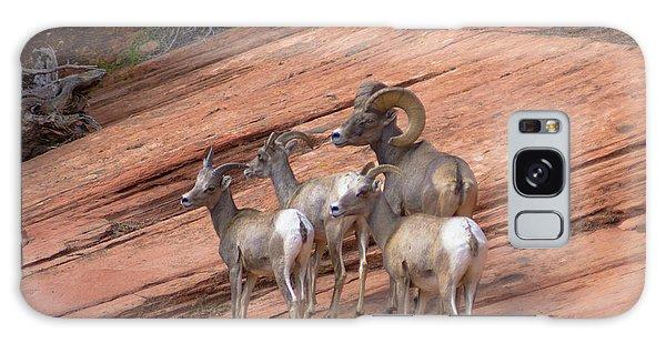 Big Horn Sheep, Zion National Park Galaxy Case