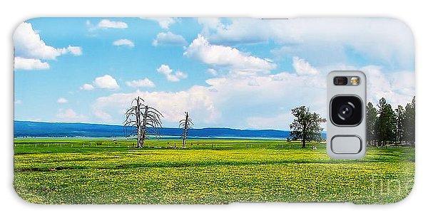 Big Summit Prairie In Bloom Galaxy Case