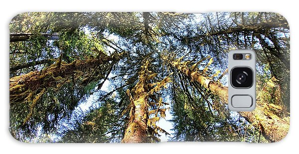Big Trees In Olympic National Park Galaxy Case