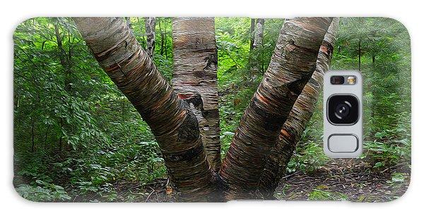 Birch Bark Tree Trunks Galaxy Case
