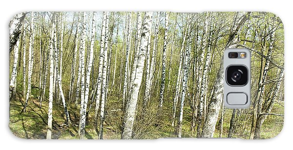 Birch Forest In Spring Galaxy Case by Irina Afonskaya