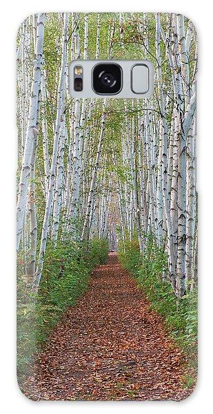 Birch Path Galaxy Case