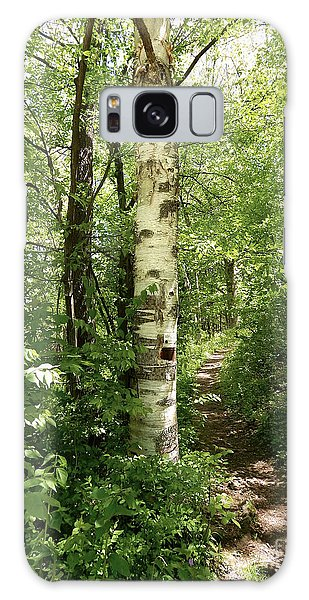 Birch Tree Hiking Trail Galaxy Case