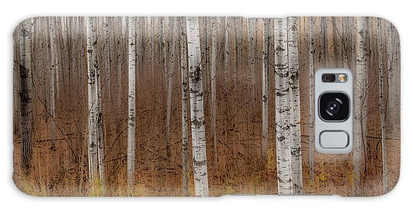 Birch Trees Abstract #2 Galaxy Case