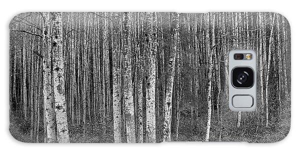 Birch Tress Galaxy Case