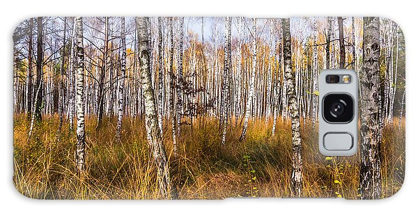 Birches And Grass Galaxy Case