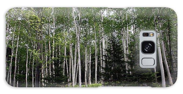 Birches Galaxy Case by Heather Applegate