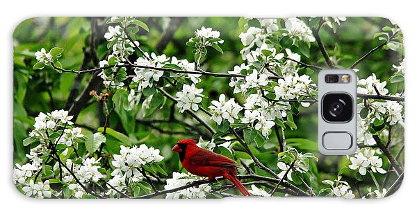 Bird And Blossoms Galaxy Case