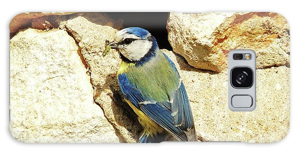 Bird Feeding Chick Galaxy Case