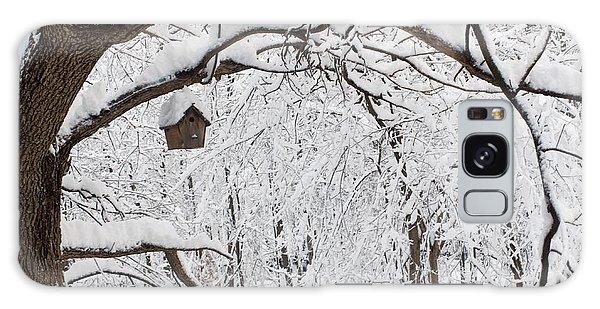 Bird House In Snow Galaxy Case