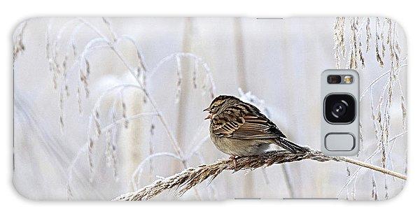 Bird In First Frost Galaxy Case