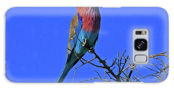 Bird - Lilac-breasted Roller Galaxy Case
