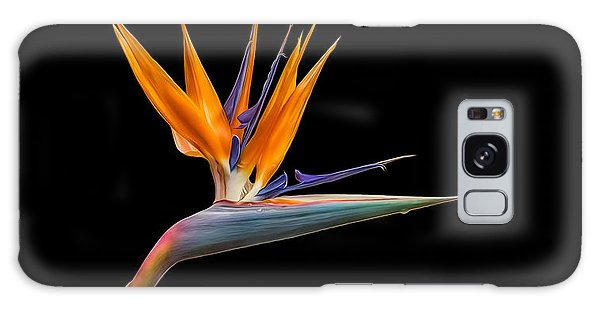 Bird Of Paradise Flower On Black Galaxy Case