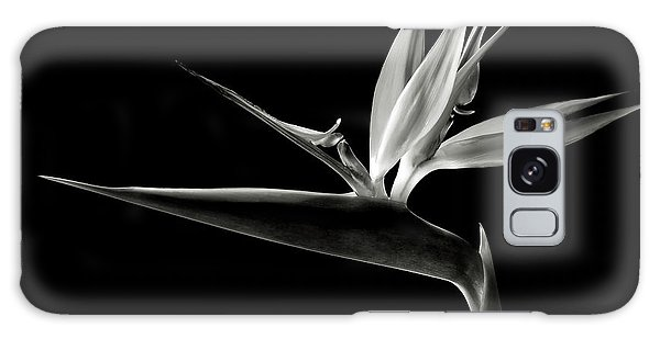 Bird Of Paradise In Black And White Galaxy Case