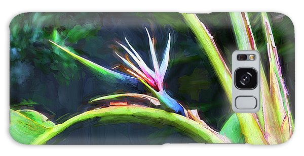 Bird Of Paradise Strelitzia Reginae 003 Galaxy Case
