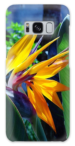 Bird Of Paradise Galaxy Case by Susanne Van Hulst