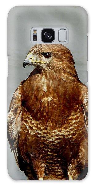 Bird Of Prey  Galaxy Case