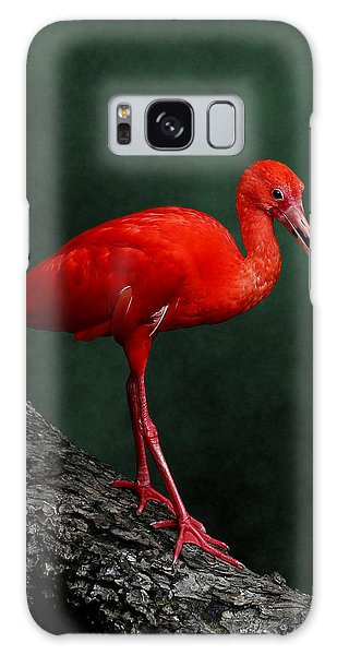 Bird On A Catwalk Galaxy Case