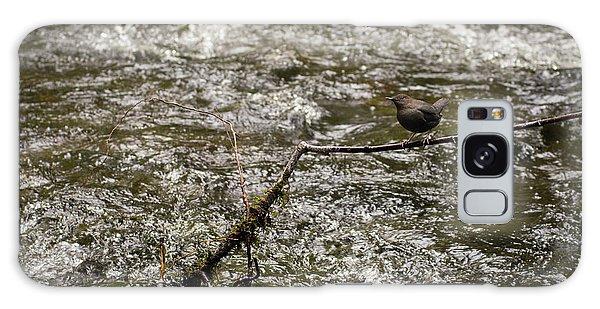 Bird On A River Galaxy Case