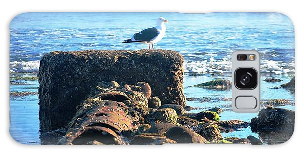 Bird On Perch At Beach Galaxy Case