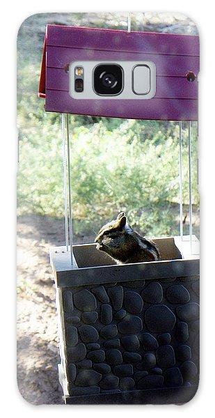 Bird Seed Thief Chipmunk Galaxy Case by Joseph Frank Baraba