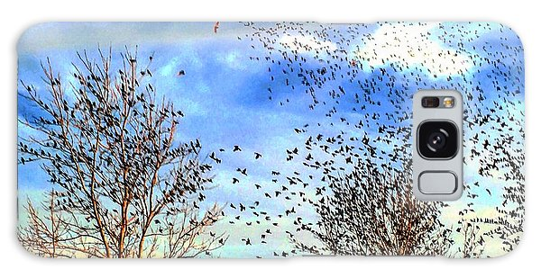 Bird Swarms Versus Hawks On The Prairie Galaxy Case
