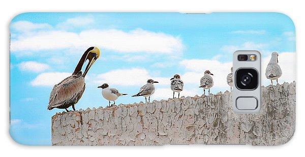 Birds Catching Up On News Galaxy Case