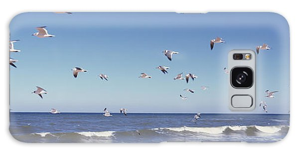Flagler Galaxy Case - Birds Flying Over The Sea, Flagler by Panoramic Images