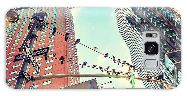 Birds In New York City Galaxy Case