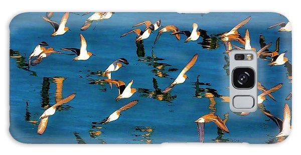 birds in the Bay Galaxy Case