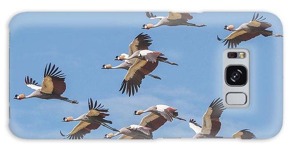 Birds Of The Same Feather. Galaxy Case