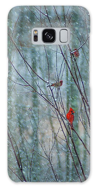 Birds On A Snowy Day Galaxy Case