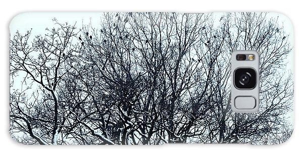 Birds On The Tree Monochrome Galaxy Case