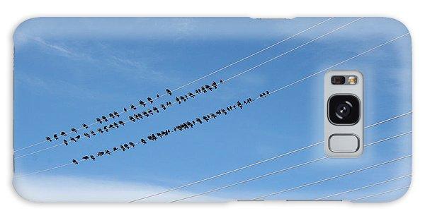 Birds On Wires Galaxy Case