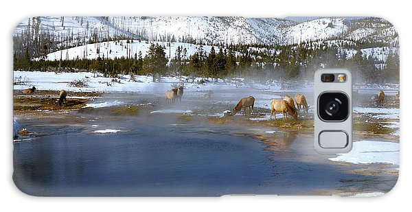 Biscuit Basin Elk Herd Galaxy Case