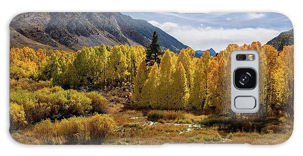 Bishop Creek Aspen Galaxy Case