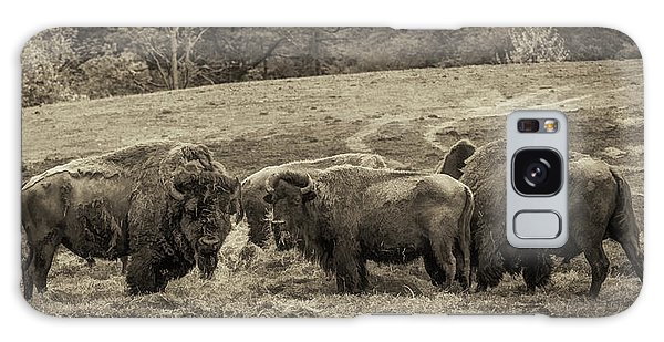 Galaxy Case featuring the photograph Bison 1 - Pano by Joye Ardyn Durham