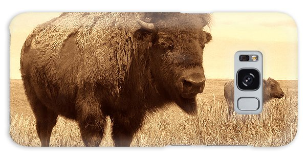 Bison And Calf Galaxy Case by American West Legend By Olivier Le Queinec