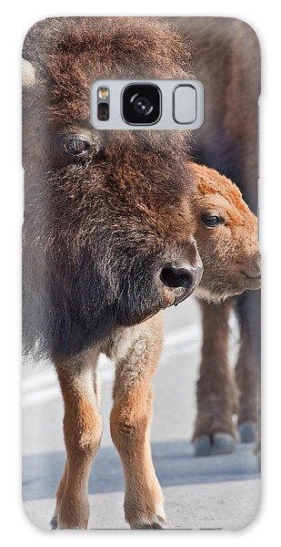 Bison And Calf Galaxy Case