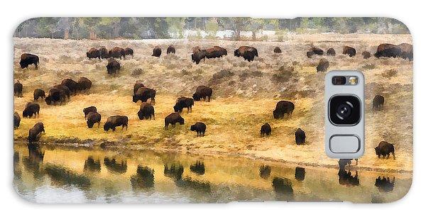 Bison At Indian Pond Galaxy Case