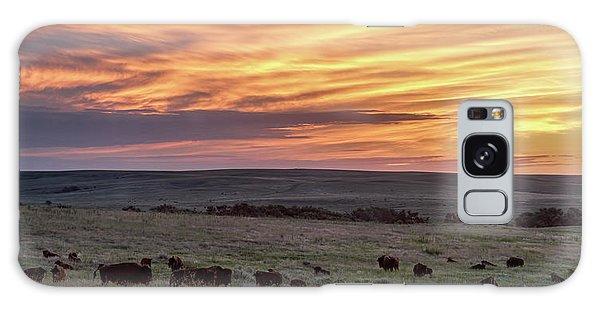 Bison At Sunrise Galaxy Case