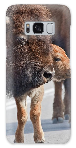 Bison Family Galaxy Case