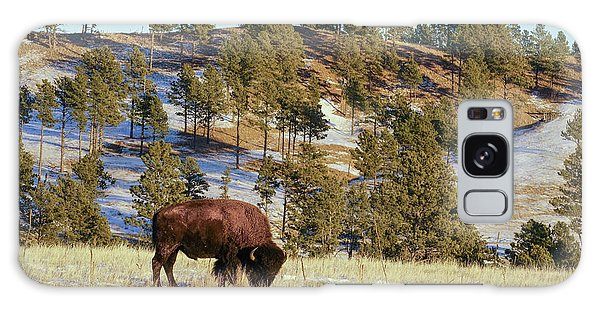 Bison In Custer State Park Galaxy Case