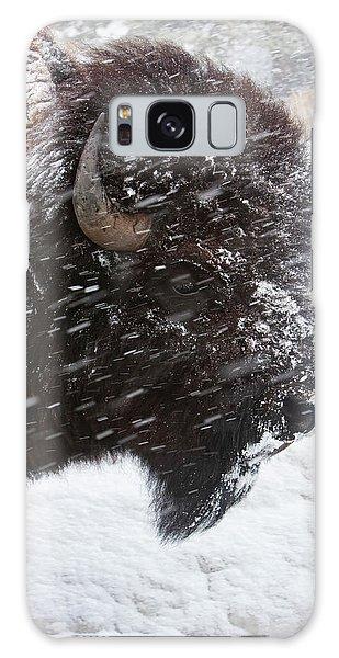 Bison In Snow Galaxy Case