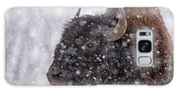 Bison In Snow Galaxy Case